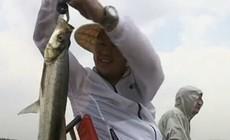 《渔我同行》第254集 筏钓米级大翘嘴