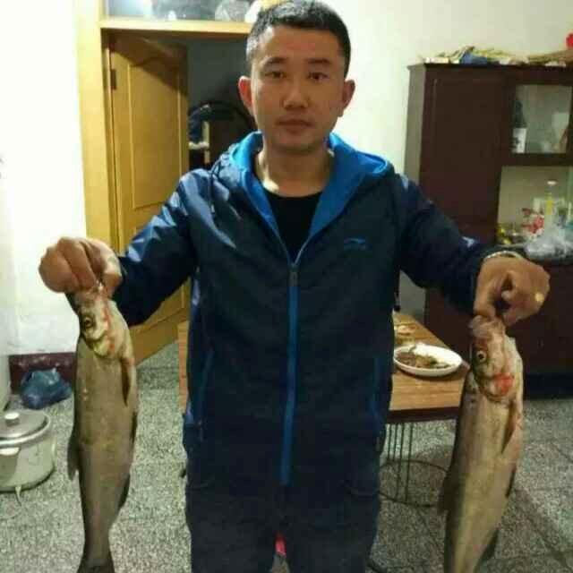 小秦dongni15787