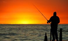 如何選擇一個好的釣位