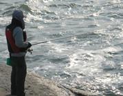 海钓技巧之立鱼钓法
