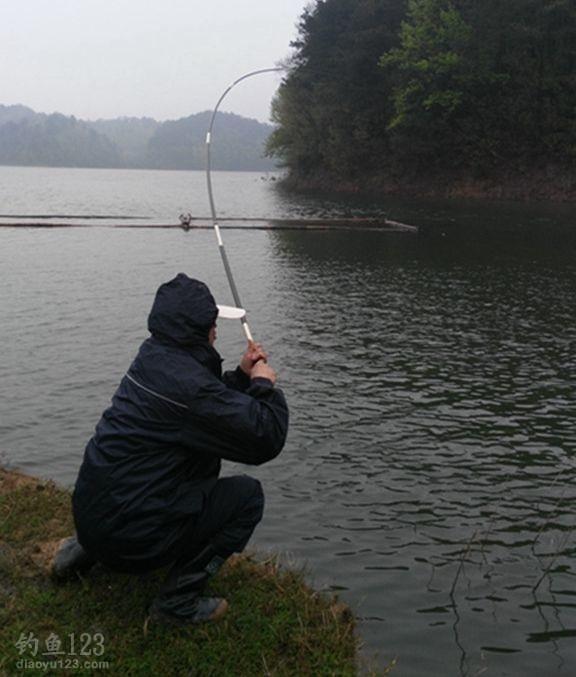 多年未开放钓鱼,鱼种以鲤、鲫、草、青、翘等居多,吃住方便