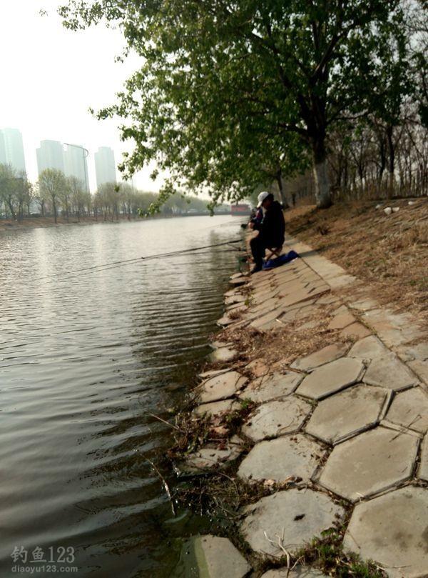 地点:天津外环河侯台子加油站对面。