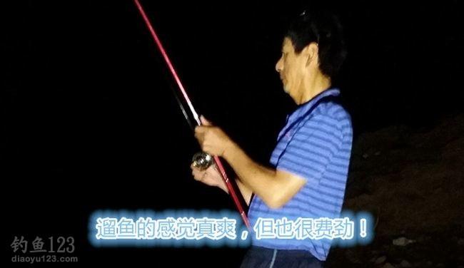 太平湖夜钓鲤鱼