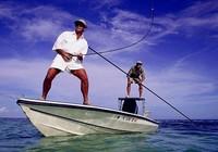 出海钓鱼基本常识