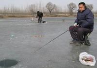[冬钓技巧]温度影响冬钓渔获