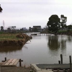 竹桥岛垂钓鱼场