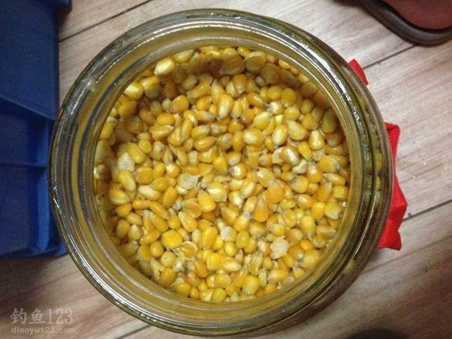近几日温度持续升高,加上做的第2批药酒玉米也泡制好了