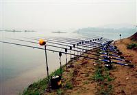 钓友分享鱼竿和钓线的保养方法