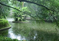 《路亚钓鱼视频》雨天路亚黑鱼的选位技巧