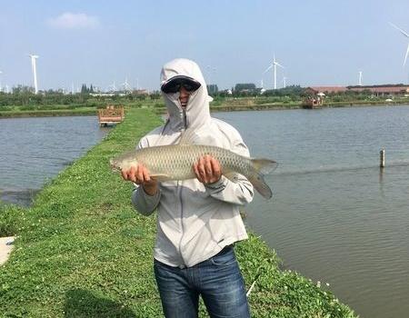 斤塘练杆,大草群鲤(征文投稿) 自制饵料钓鲢鳙鱼