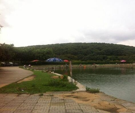 山湖荔枝果园