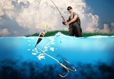 差异鱼类的吃口在浮漂上的行动区别