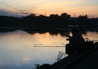 《媛来如此》地瓜讲解野外作钓需根据鱼性调钓浮漂