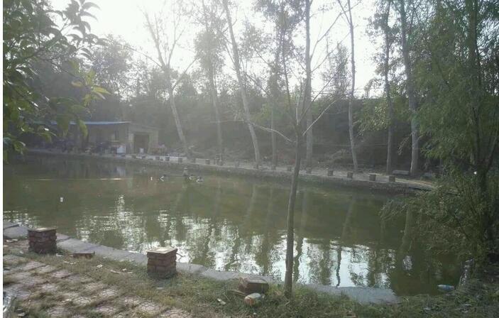 鸿鹄垂钓园