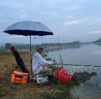 深圳只釣不吃