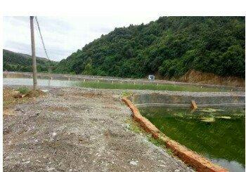 二龙湖钓场客来鱼庄
