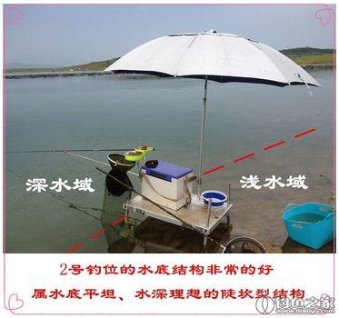 盛夏雨天好 夜鱼深水找 做窝少而精 收获