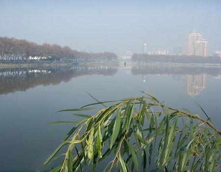 深冬大风天甘棠湖夜钓2斤多鳊鱼和翘嘴鱼
