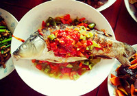 橙汁蒜蓉剁椒鯉魚的烹飪方法