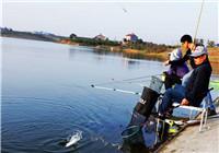 钓友分享常见淡水鱼的觅食习性(上)