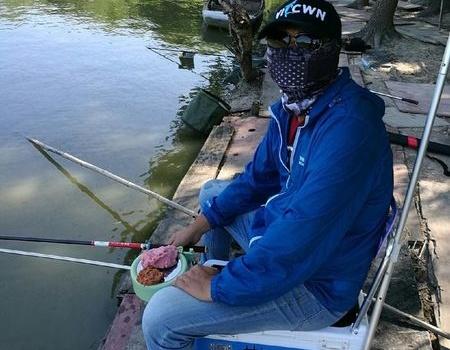 冒着酷暑再站老王鱼塘 天元饵料钓鲢鳙鱼
