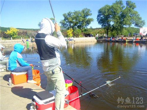 坑塘钓鱼技巧