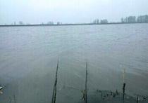 西湖天气预报