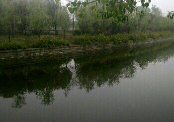徐沛运河支河