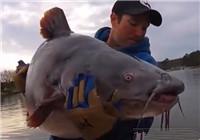 《垂钓对象鱼视频》 男子夏季江河钓鱼钓获俩鲶鱼精