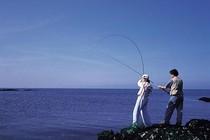 秋季钓鱼的小技巧