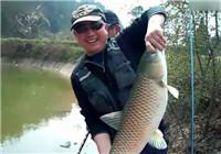 《垂钓对象鱼视频》 钓鱼高手池塘钓大草