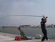 水库抛竿钓鱼技巧