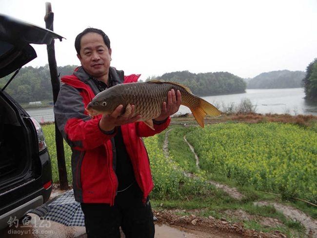 百丈崖的1号线很是顺利的钓上了7.8斤鲤鱼