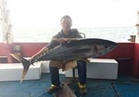 南油海钓擒获130斤重大金枪鱼