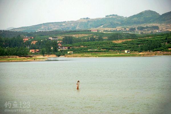 张庄水库钓鱼