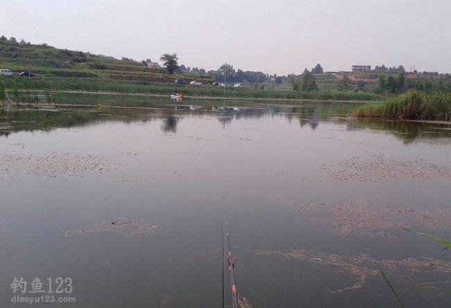 夏季钓鱼钓位选择