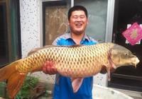 《水库钓鱼视频》数位钓友狂拉巨物