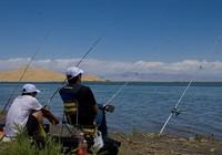 钓鱼打窝的几种方法