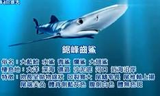 《宝岛渔很大》 20150816 九棚殊死战海边夜钓大锯峰齿鲨