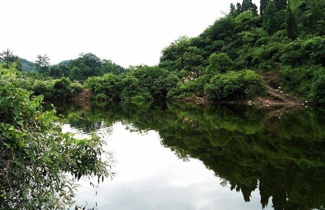 山塘钓鱼环境