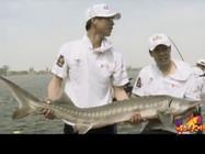 《钓点大对决》第52集 天津静海垂钓园挑战巨型鲟鱼(2)