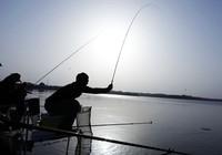 《黑坑江湖》第三季 第20集 十位钓鱼高手对决爆连池(上)