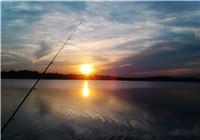 揭秘夏季钓鱼时鱼不爱吃饵的原因