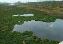 泵站河天氣預報