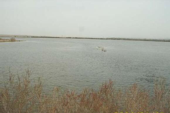后头湖水库