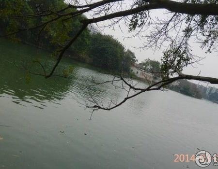 烟雨朦胧  初春小试大河 水流跟瀑布一样