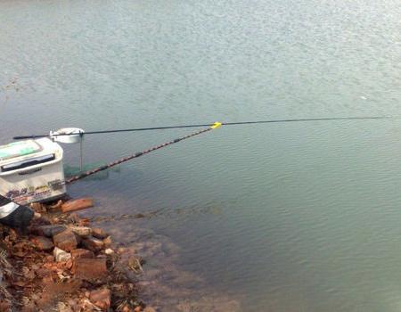 冬季野河红虫饵垂钓鲫鱼、翘嘴鱼、鳊鱼