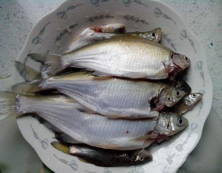 冬季野河阴雨天气垂钓鳊鱼放生