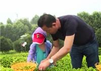 《爸爸去钓鱼》第11集 长沙金井镇萌娃买渔具