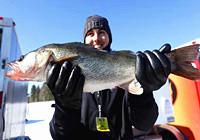 美国明尼苏达州零下四十度冰钓比赛集锦